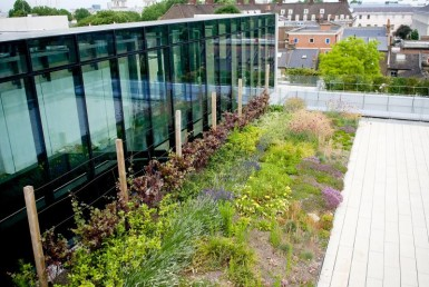 new build improves London's air quality